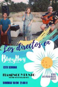 Flamenco y Punto @ Bloody Mary Chiringhuito, Benimeli | Valencian Community | Spain